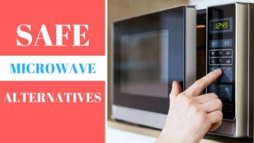 Best Alternative of Microwave Oven