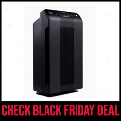 Winix 5500-2 Air Purifier - Best Budget-Friendly Black Friday Sale